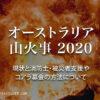 【オーストラリア山火事2020】助けて!現状と消防士・被災者支援やコアラ募金の方法に